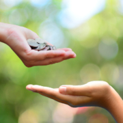 Percorsi di volontariato: per Maria si può fare del bene con piccoli gesti